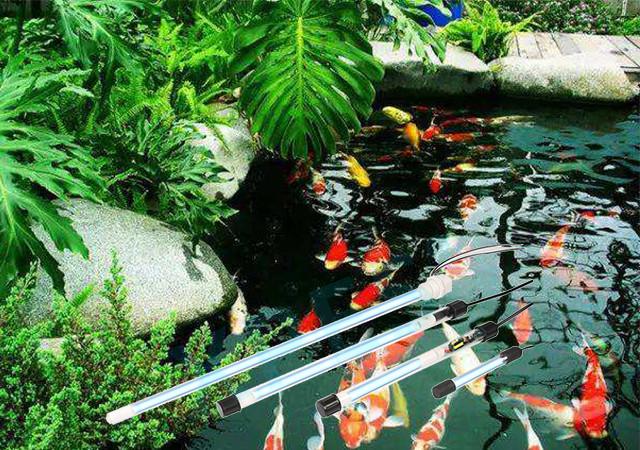 uv light for pond